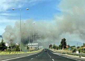 φωτιά, https://viralnewsgr.eu//